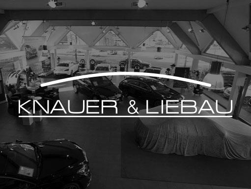 knauer-grau-logo